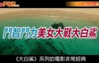 (粵)斗智斗力美女大戰大白鯊