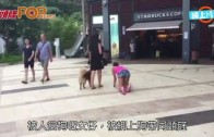 (粵) 赤柱驚現放「人」 背心女綁狗帶散步