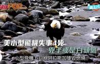 (粵)美小型飛機失事4死 兇手或是白頭鷹