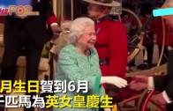 (粵)4月生日賀到6月 千匹馬為英女皇慶生