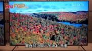 (粵) 4K電視 10-bit面板鞡析色彩