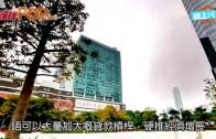 (粵)陸羽仁:中國經濟復甦ing?  起碼要幾年