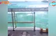 (粵)印尼峇里大浪衝擊 2六旬港人一死一傷