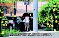 (粵)毛舜筠逆市照贏錢 炒樓勁賺三千萬