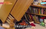 (粵)IKEA抽屜櫃壓死6孩 全面回收2900萬個