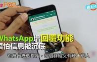 (粵)WhatsApp增回覆功能  唔怕信息被沉底
