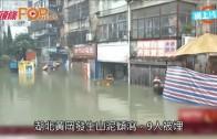 (粵)湖北暴雨嚴峻25死 沖到大魚頭都斷