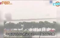 (粵)武漢兩湖合體 炸通揚起水花洩洪