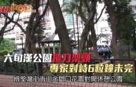 (港聞)六旬漢公園揸刀架頸 專家對峙6粒鐘未完