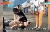 (粵)鄭州護士雨中跪地搶救  網民封˝最美90後