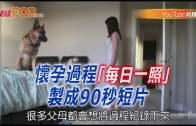 """(粵)懷孕過程""""每日一照""""制成90秒短片"""