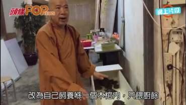(港聞)法師教龜波氣功增高  fb突改名 翁靜晶救龜