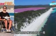 (粵)數十海豚逆浪覓食  不惡性競爭醒過人類
