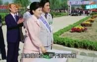 (粵)韓總統府買360粒偉哥  「防朴槿惠高山症」
