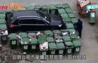 (粵)合肥私家車亂咁泊  遭40˝垃圾桶陣˝圍堵