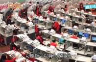 (港聞)陸羽仁:跌市買股似接刀  建議買低價大股