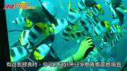 (粵)關島海洞  直擊珊瑚世界