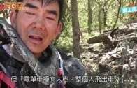 (粵)任賢齊越野賽撞樹飛墮  傷腰˝不能行房˝:唔甘心