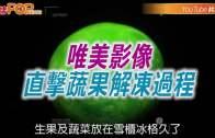 (粵)唯美影像 直擊蔬果解凍過程