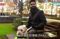 (粵)揭導盲犬受歧視慘況  大力撞開用傘攻擊