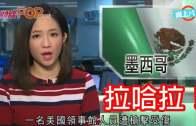 (粵)TVB女主播又蝦碌 駱文捷疑似爆粗瘋傳