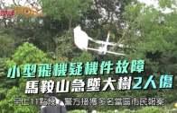 小型飛機疑機件故障  馬鞍山急墜大樹2人傷