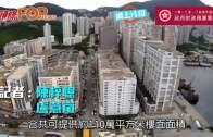 本年度賣住宅地28幅 料5年建逾9萬公營屋