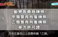(港聞)賣繁育狗隻需領牌  漁護署新例下月生效