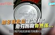 (粵)加多寶飲品識˝變身˝  用刀鎅開竟然係…