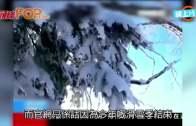 (粵)頭髮捲傳送帶左肢截斷  山東十歲女命喪滑雪場