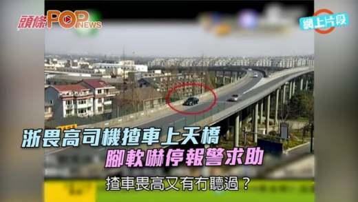 浙畏高司機揸車上天橋  腳軟嚇停報警求助