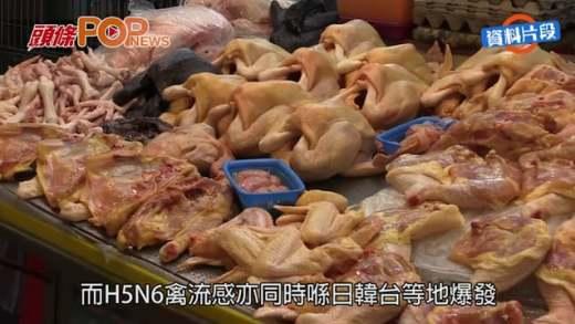 瘋傳H5N6禽流感˝人傳人˝  養和澄清:冇開會戒備