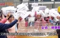 (港聞)42%女:˝事業線˝係侮辱  60%男:冇貶義