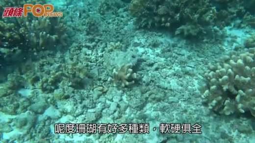 (粵)塞班島浮潛樂  太平洋海上明珠
