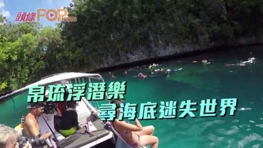 (粵)帛琉浮潛樂 尋海底迷失世界