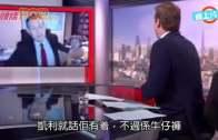 (粵)BBC特務女:我唔係褓姆  南韓專家澄清:我有着褲