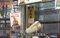 (港聞)人雞分隔難達零風險  袁國勇:食活雞有代價