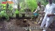 (粵)峇里環保度假村  支持永續能源