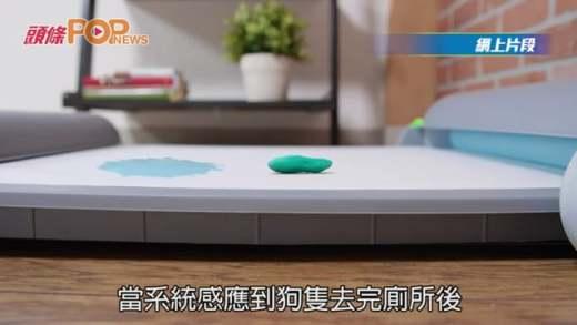 (粵)智能狗廁所板 毋須主人動手 清潔便便