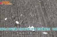 (港聞)砵蘭街狂徒連插2途人  警查CCTV速拘紅衣男