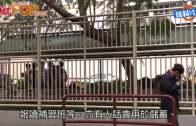 (港聞)誠哥向DSE考生派五千  屯門區學生都有份