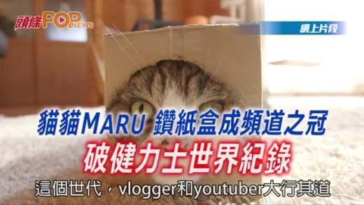 (粵)貓貓MARU鑚紙盒成頻道之冠  破健力士世界紀錄