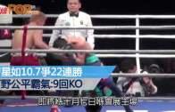 曹星如10月爭22連勝 河野公平霸氣:9回合KO