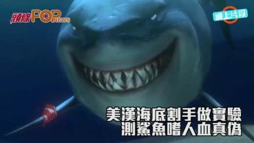 美漢海底割手做實驗  測鯊魚嗜人血真偽
