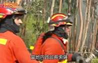 熱浪襲葡萄牙山火持續  消防直升機墜毀機師亡