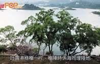 陶傑:澳門颱風傷亡慘重 衰在回歸後冇搞好基建