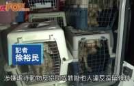 101狗被困貨櫃疑遭割聲帶  警拘3人涉虐畜