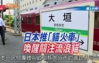 日本推「貓火車」 喚醒關注流浪貓