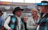 美機場聘貓 任旅客大使 甫上班已獲極高人氣