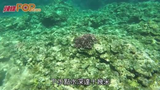 石垣水中作樂  一天團浮潛看海洋景觀